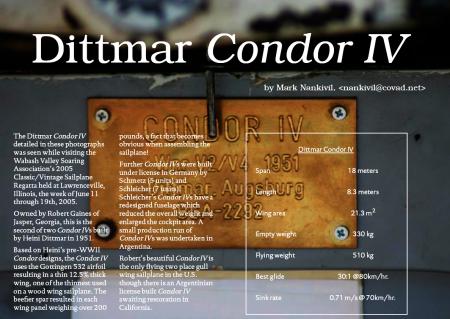 Condor_Article_cover